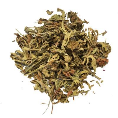 Dried Pelargonium